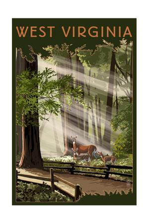 West Virginia - Deer and Fawns by Lantern Press