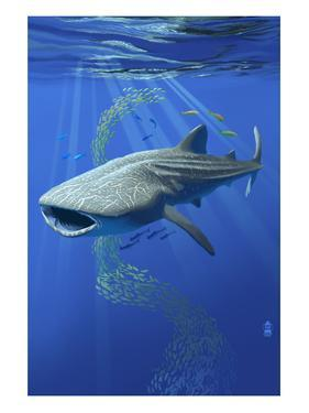 Whale Shark by Lantern Press