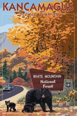 White Mountain National Forest, New Hampshire - Kancamagus Scenic Byway by Lantern Press