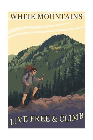 MT WASHINGTON VALLEY TRAIN ART PRINT Old Man of the Mountain White NH gift hiker