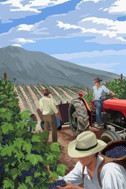 Wine Grape Harvest by Lantern Press