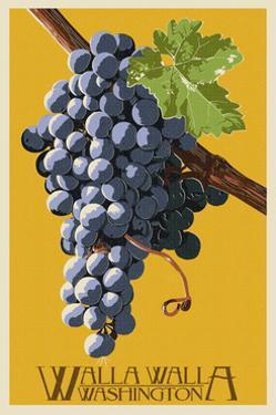 Wine Grape - Walla Walla, Washington by Lantern Press