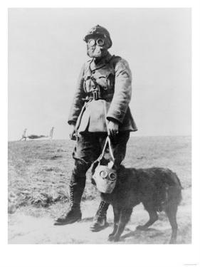 WWI Sergeant and Dog Wearing Gas Masks Photograph by Lantern Press