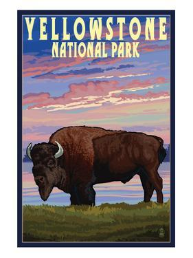 Yellowstone National Park - Bison and Sunset by Lantern Press