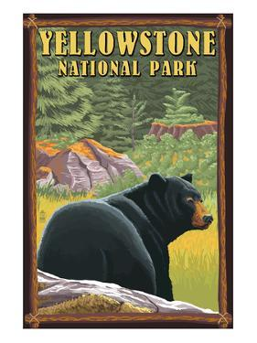 Yellowstone National Park - Black Bear in Forest by Lantern Press