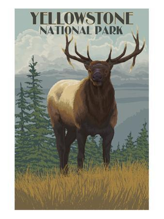 Yellowstone National Park - Elk in Forest by Lantern Press