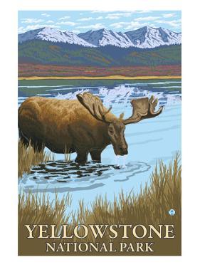 Yellowstone National Park - Moose Drinking in Lake by Lantern Press