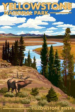 Yellowstone National Park - Yellowstone River and Elk by Lantern Press