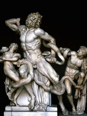 Laocoon and His Sons. Sculpture. 25BC