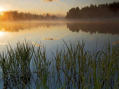 https://imgc.allpostersimages.com/img/posters/lapwai-lake-at-sunrise-winchester-lake-state-park-idaho-usa_u-L-PN70MO0.jpg?artPerspective=n
