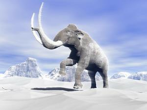 Large Mammoth Walking Slowly on the Snowy Mountain Against the Wind