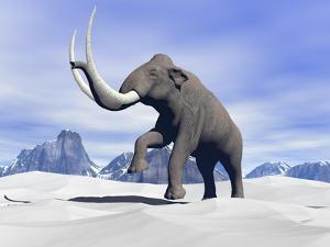 Large Mammoth Walking Slowly on the Snowy Mountain