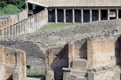 https://imgc.allpostersimages.com/img/posters/large-theatre-pompeii_u-L-PPQCXY0.jpg?p=0