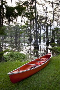 Canoe, Texas's Largest Natural Lake at Sunrise, Caddo Lake, Texas, USA by Larry Ditto