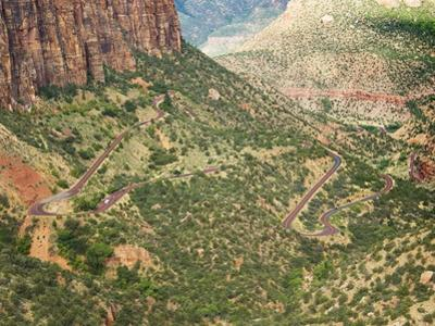 Winding Road in Zion National Park