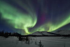 Aurora Borealis I by Larry Malvin
