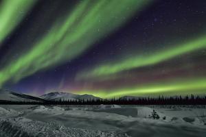 Aurora Borealis V by Larry Malvin