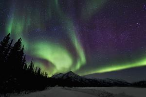 Aurora Borealis VI by Larry Malvin