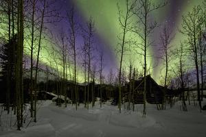 Aurora Borealis XII by Larry Malvin