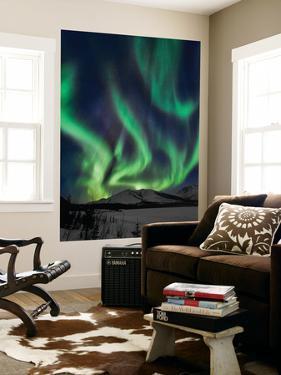 Aurora Borealis XIV by Larry Malvin