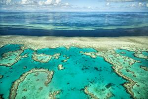 Coral River II by Larry Malvin