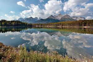 Herbert Lake by Larry Malvin