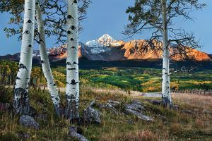 Wilson Peak Aspens I by Larry Malvin