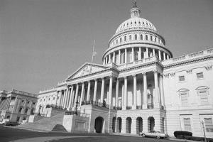 United States Capital Building by Larry Rubenstein