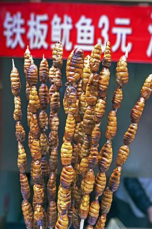 https://imgc.allpostersimages.com/img/posters/larvae-on-skewers-for-sale-at-dong-hua-men-night-market-beijing-china-asia_u-L-PWFTCS0.jpg?p=0