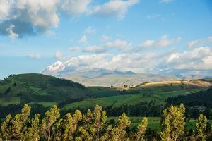 Late afternoon view of fields near Cayambe Volcano, Imbabura and Pichincha Provinces, Ecuador