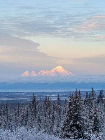 Mt Iliamna in Winter at Dawn by Latitude 59 LLP