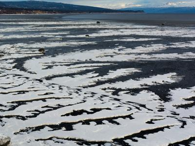 Serpentine Ice on Beach by Latitude 59 LLP
