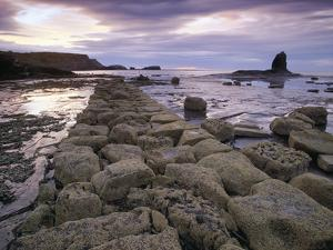 Saltwick Bay Is South of Whitby and the Distinctively Shaped Black Nab Rock by LatitudeStock