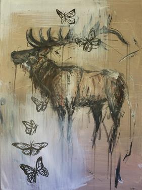 Awaken by Laura D Zajac