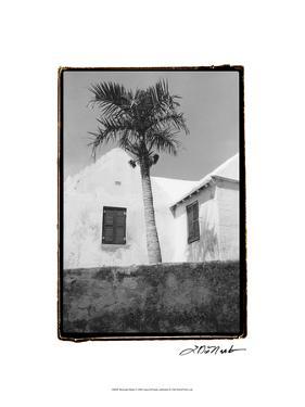 Bermuda Shade by Laura Denardo