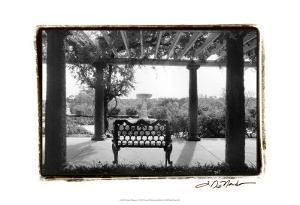 Garden Elegance I by Laura Denardo