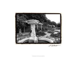 Garden Elegance II by Laura Denardo