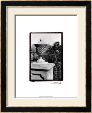 Garden Elegance VI by Laura Denardo