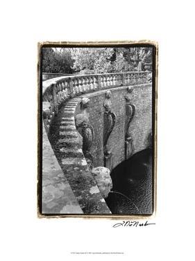 Italian Garden III by Laura Denardo