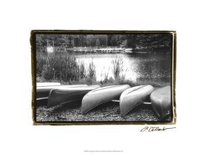 Lake Living I by Laura Denardo