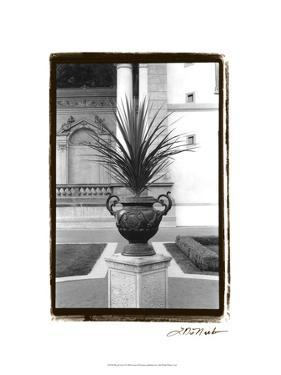 Royal Urn I by Laura Denardo