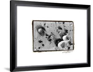 Sand Treasures I by Laura Denardo