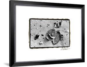 Sand Treasures III by Laura Denardo