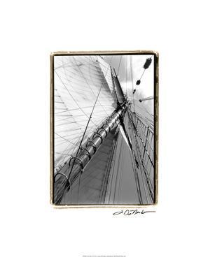 Set Sail II by Laura Denardo