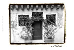 Venetian Doorways V by Laura Denardo