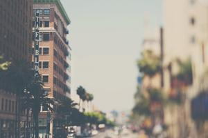 Los Angeles by Laura Evans