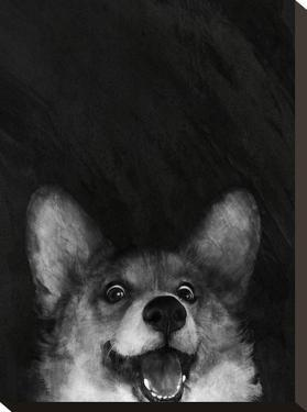 Sausage Foxcorgi by Laura Graves