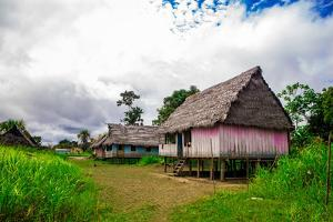 Amazon Village, Iquitos, Peru, South America by Laura Grier