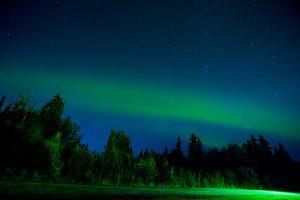 Aurora Borealis (Northern Lights) viewed from Denali Princess Wilderness Lodge, Alaska, USA by Laura Grier