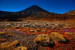 Beginning of the Tongariro Crossing, UNESCO World Heritage Site, North Island, New Zealand, Pacific by Laura Grier